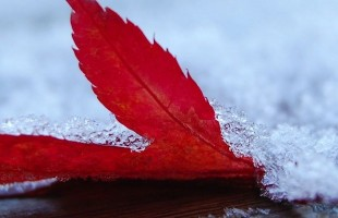 inverno-perugia-1890x530